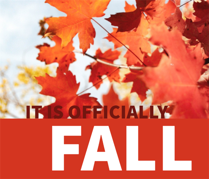 "Fall leaves and ""It's Officially FALL"" written"