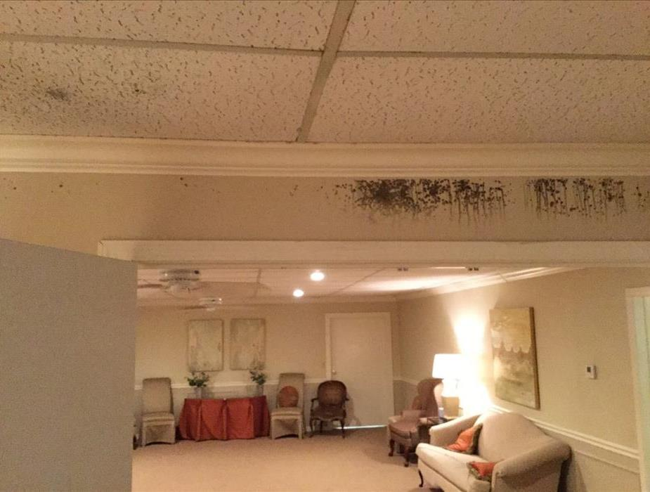 Room affected by mold in a local funeral home