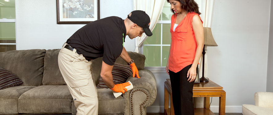 Oxford, MS carpet upholstery cleaning